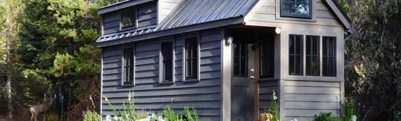 What You Need To Know About Owning A Tiny House